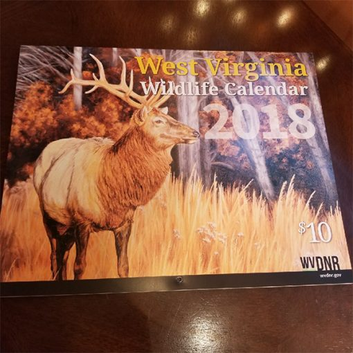 Chocolate-Moose-WV-DNR-Wildlife-Calendar